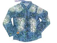 Рубашка джинсовая для мальчика, S&D, размеры 8,10,12,16 лет, арт. KK-347