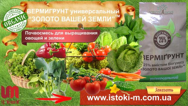 вермигрунт_почвосмесь для овощей и ягод_почвосмесь для овощей_почвосмесь для газона_почвосмесь для цветов_почвосмесь для кустарников_грунт для овощей_грунт для цветов_грунт для газона_грунт для ягод_вермигрунт универсальный_вермигрунт купить_вермигрунт для рассады_вермигрунт золото вашей земли_вермигрунт отзывы_вермигрунт универсальный состав_органическое удобрение_органические удобрения купить_огранические удобрения_виды органических удобрений_характеристика органических удобрений_применение органических удобрений_производство органических удобрений_органические удобрения их виды и характеристика_органические удобрения растений_органические удобрения для огорода_использование органических удобрений_органическое_удобрения органические_органические удобрения отзывы_активное органическое удобрение_внесение органических удобрений в почву_органические удобрения для рассады_удобрения органические цена_купить удобрение_удобрение применение_удобрение опт_удобрение производитель_удобрение цена_грунт для зимнего сада_органический грунт для зимнего сада_органическое удобрение для зимнего сада_органическое удобрение для цветов и кустарников_органическое удобрение для пальм_органическое удобрение для кустов_органическое удобрение для домашних цветов_органическое удобрение для комнатных цветов_плодородный грунт_ почвогрунт универсальный_грунт универсальный_грунт для рассады_грунт для рассады купить_грунт для рассады томатов_грунт для рассады помидоров_состав грунта для рассады_грунт для рассады какой_грунт под рассаду_грунт для рассады отзывы_грунт для рассады перца_грунт для рассады лучше_подготовка грунта для рассады_грунт для рассады томатов и перцев_грунт для рассады оптом_грунт для рассады цена_грунт земля для рассады_грунт для рассады производитель_грунт для рассады_почвосмесь для рассады_грунт для рассады овощей купить_грунт для рассады томатов_грунт для рассады купить оптом от производителя_грунт для рассады огурцов_грунт для рассады перца_грунт для рассады помидоров в д