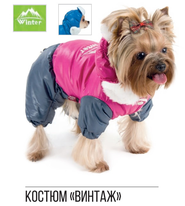 Pet Fashion Костюм Винтаж ХS