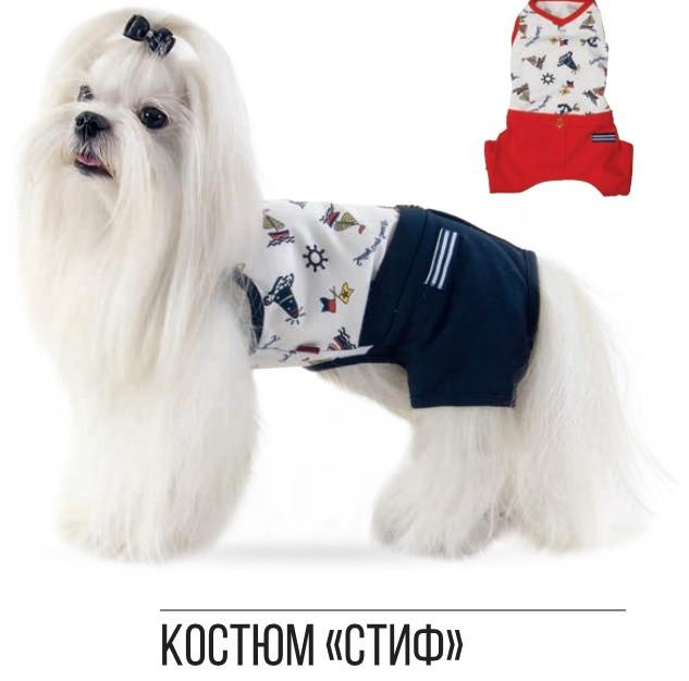 Pet Fashion Костюм Стиф S
