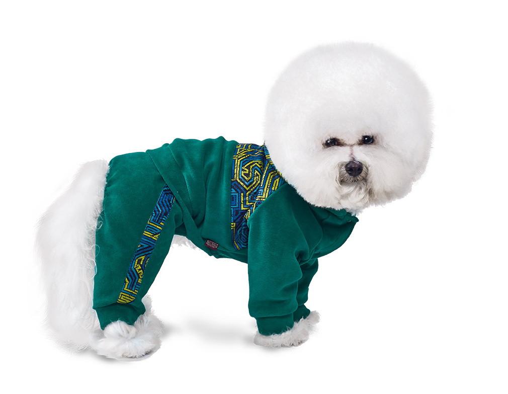 Pet Fashion Костюм Чемпион M 2