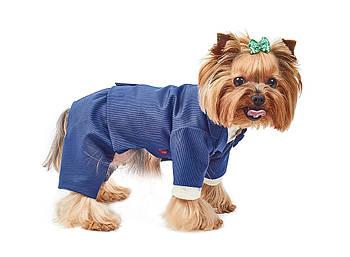 Костюм-тройка Pet Fashion Джованни XS