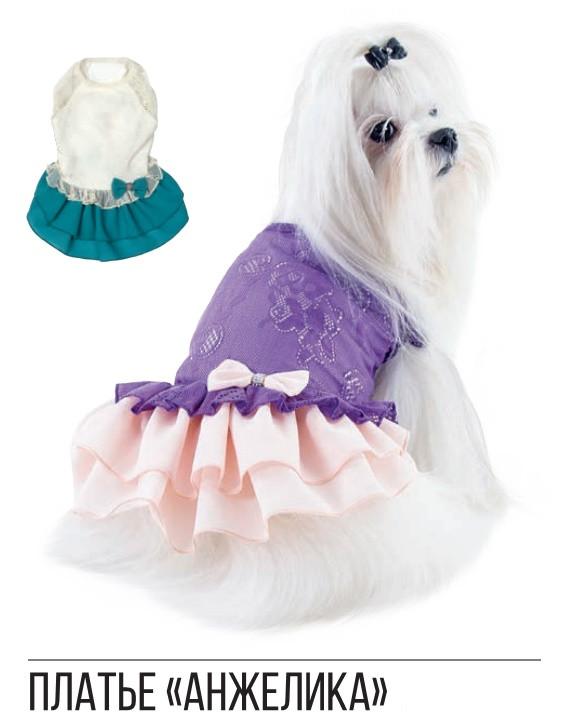 Pet Fashion платье Анжелика XS2