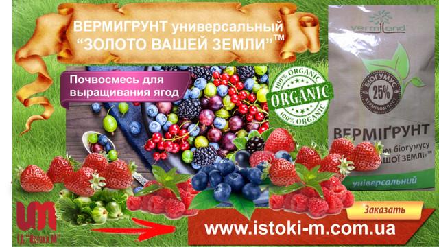 органическое выращивание малины_органическое земледелие_удобрение органическое для подкормки малины и ягодных кустарников