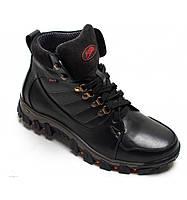 Ботинки кожаные мужские 083ч 42