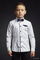 Рубашка Luxury 3649-1