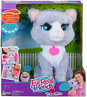 Котёнок Бутси Furry Friends Hasbro (B5936)