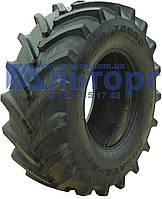 Шина 600/70R30 TR-106 - Росава, фото 1