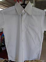 Рубашка детская школа