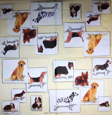 Редкие декупажные салфетки Собаки 3253