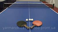 Аренда теннисных столов в Киеве
