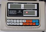 Весы торговые электронные Nokasonic (до 300 кг) с платформой и счетчиком цены на трубе (на стойке) DJV /83, фото 4
