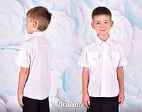 Рубашка для мальчика  школьная нарядная короткий рукав цвет белый