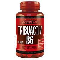 ActivLab TRIBUACTIV B6 90 caps активлаб трибулус