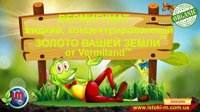 вермигумат_органическое удобрение вермигумат_органическое удобрение для подкормки томатов_органическое удобрение для подкормки помидор_удобрение для подкормки рассады помидор_жидкое органическое удобрение для подкормки томатов_жидкое органическое удобрение для подкормки помидор_органическое удобрение для подкормки огурцов_удобрение для подкормки рассады огурцов_жидкое органическое удобрение для подкормки огурцов_органическое удобрение для подкормки перца_удобрение для подкормки рассады перца_жидкое органическое удобрение для подкормки перца_органическое удобрение для подкормки баклажан_удобрение для подкормки рассады баклажан_жидкое органическое удобрение для подкормки баклажан_органическое удобрение для подкормки капусты_удобрение для подкормки рассады капусты_жидкое органическое удобрение для подкормки капусты_органическое удобрение для подкормки зелени_удобрение для подкормки рассады зелени_жидкое органическое удобрение для подкормки зелени_органическое удобрение для подкормки клубники_удобрение для подкормки рассады клубники_жидкое органическое удобрение для подкормки клубники_органическое удобрение для подкормки малины_удобрение для подкормки рассады малины_жидкое органическое удобрение для подкормки малины_органическое удобрение для подкормки голубики_удобрение для подкормки голубики_жидкое органическое удобрение для подкормки голубики_органическое удобрение для подкормки ежевики_удобрение для подкормки ежевики_жидкое органическое удобрение для подкормки ежевики_органическое удобрение для подкормки смородины_удобрение для подкормки смородины_жидкое органическое удобрение для подкормки смородины_ органическое удобрение для подкормки крыжовника_удобрение для подкормки крыжовника_жидкое органическое удобрение для подкормки крыжовника_ органическое удобрение для подкормки фруктовых деревьев_удобрение для подкормки фруктовых деревьев_жидкое органическое удобрение для подкормки фруктовых деревьев_органическое удобрение для подкормки винограда_удобрение для подкормки