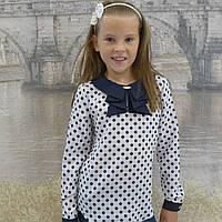"""Блузка для девочки """"Жабо""""(в горох белая-длиный рукакв)"""