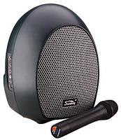 Компактная активная система SOUNDKING SKWH065U**