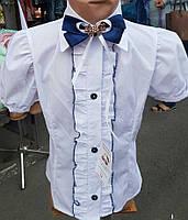 Блуза для девочки с бантом 3007/2