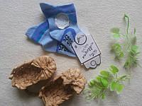 Носочки для модника на роддом 0-3 мес голубые