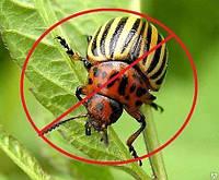 Инсектициды в профессиональной фасовке