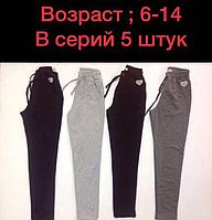 Лосины щтаны для девочки 6-14