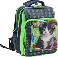 """Школьный рюкзак """"BAGLAND"""" серый салатовый Кот"""