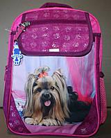 Школьный рюкзак Bagland бордоовый розовый