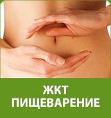 желудочно-кишечный тракт, пищеварение