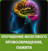 улучшение мозгового кровообращения и памяти