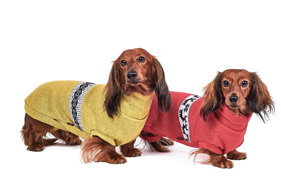 Pet Fashion Свитер Крисс S