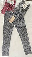 Джеггинсы-лосины Grace, хлопок, р.134-164