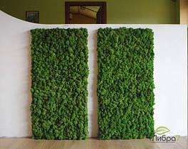 Панель зі стабілізованим мохом Витрата 6кг/m2.Голландія.