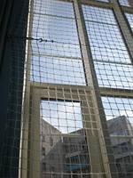 Сетка для защиты окон спортзала, фото 1
