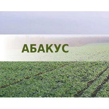 Озимий ріпак Абакус (Lembke) - 1 п.о.