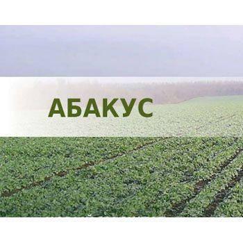 Озимий ріпак Абакус (Lembke) - 1 п.о., фото 2