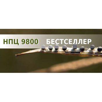 Озимий ріпак НПЦ 9800 (Lembke) - 1 п.о.