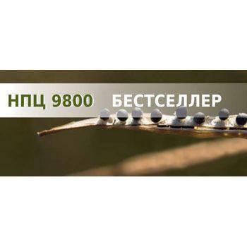 Озимий ріпак НПЦ 9800 (Lembke) - 1 п.о., фото 2