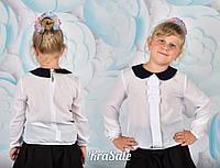 Школьная белая блуза длинный рукав с черным воротничком низ резинка