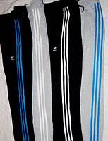 Штаны трикотажные Adidas