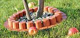 Бордюр садовый декоративный Palisada h 6см теракотовий, фото 5