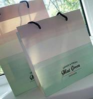 Подарунковий пакет Mint 22 см / Подарочный Пакет Минт 220 мм