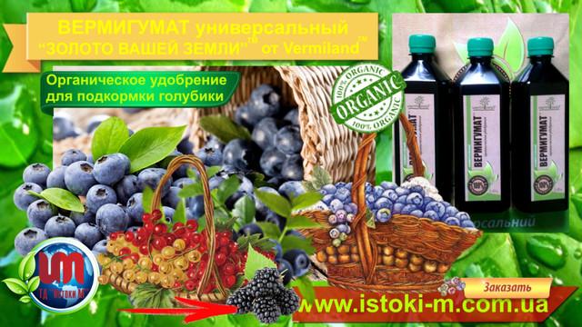 органическое земледелие_удобрение органическое для подкормки малины-органическое выращивание малины_малина удобрение для подкормки