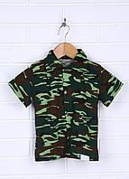 Рубашка с коротким рукавом на пуговицах.
