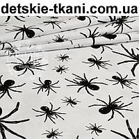 Польская бязь с черными пауками на белом фоне (862)
