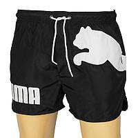 Мужские шорты Puma 4381