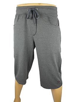 Мужские шорты Fabianі 5725  серого цвета