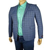 Мужской пиджак Daniel Perry Jupiter синего цвета в большом размере