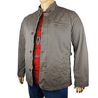 Мужская демисезонная куртка Santorio SJ 8109 большого размера