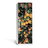 Наклейка на холодильник Цитрус 01  (виниловая наклейка, самоклейка, оклеить холодильник, декор кухни