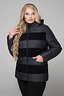 Стильная женская демисезонная куртка большого размера черного цвета (48, 50, 52, 54, 56, 58, 60, 62)
